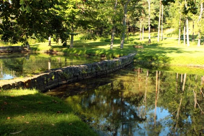 Smelly Pond 2011